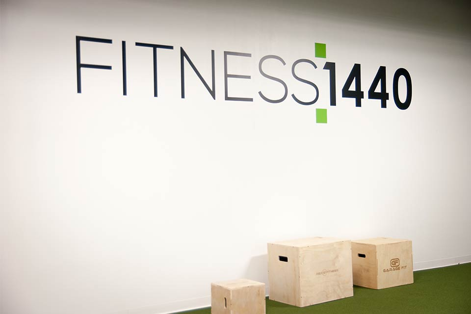 Fitness 1440 gym plyo boxes
