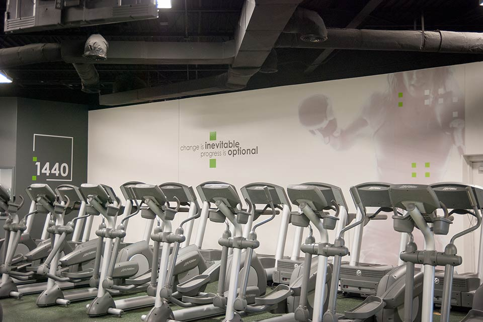Fitness 1440 gym cardio equipment