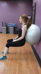 Fitness 1440 Stability Ball Wall Sits